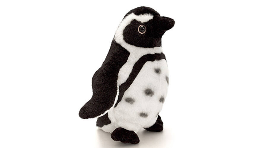 Aranyos plüss pingvin!